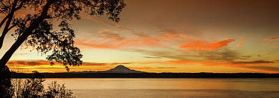 Photograph - Mt. Rainier Sunrise by Don Schwartz