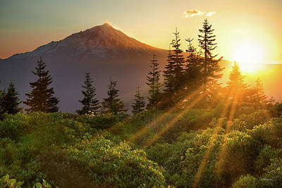 Photograph - Mt. Shasta by Leland D Howard