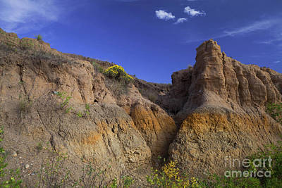 Photograph - Mud Castles by Barbara Schultheis
