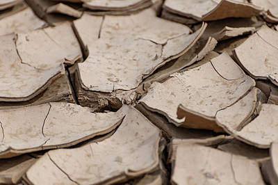 Photograph - Mud Cracks by Douglas Killourie
