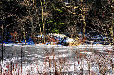 Photograph - Mud Pond Frozen by Tom Singleton