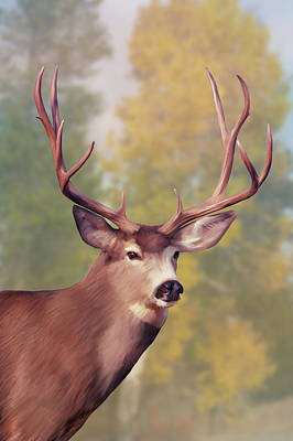 Digital Art - Mule Deer Buck In Autumn by Mark Miller
