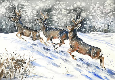 Painting - Mule Deer On The Run by Zaira Dzhaubaeva
