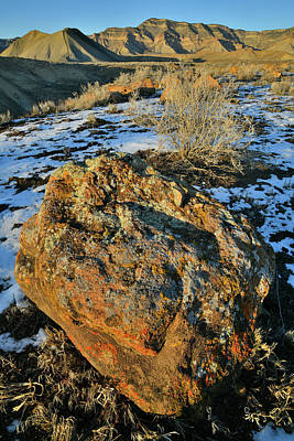 Photograph - Multi-colored Boulder At The Book Cliffs by Ray Mathis