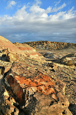 Photograph - Multi-colored Boulders On Ruby Mountain by Ray Mathis