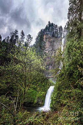 Comedian Drawings - Multnomah Falls, Oregon 02 by Charles Wollertz