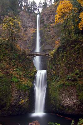 Scenic Photograph - Multnomah Falls by Ted Ducker Photography