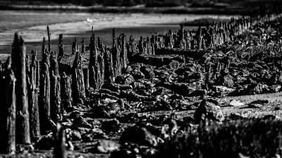 Photograph - Mur Naturel by Jorg Becker