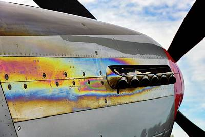 Photograph - Mustang Colors by Chris Buff
