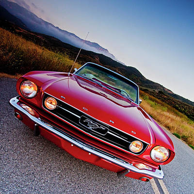 Photograph - Mustang Convertible by John Rodrigues