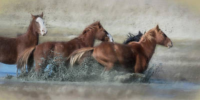 Photograph - Mustangs Getting Out Of A Muddy Waterhole The Fast Way Painterly by Belinda Greb