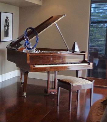 Photograph - My Piano by VIVA Anderson