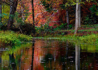 Colorful Photograph - My Secret Place by Kristi Swift