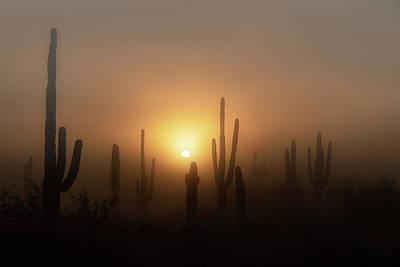 Photograph - Mystic Desert Sunrise  by Saija Lehtonen