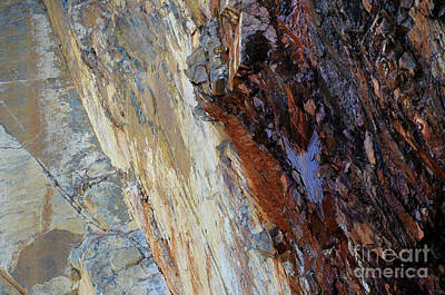 Photograph - Natural Cave Wall ... Abstract 4  by Elaine Manley