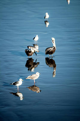 Photograph - Natural Reflection by Eric Christopher Jackson