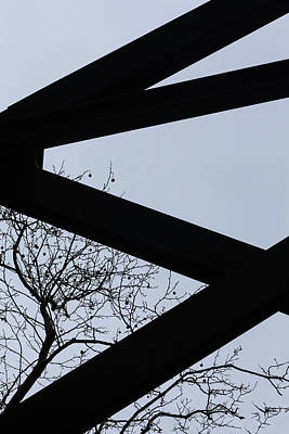 Photograph - Nature And Iron  by Robert Ullmann