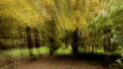 Photograph - Weight Thoughts by Jorg Becker