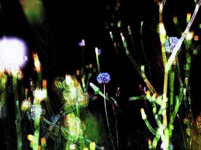 Photograph - Nature Art 21 by Jorg Becker
