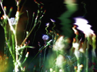 Photograph - Nature Art 22 by Jorg Becker