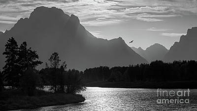 Photograph - Nature At Oxbow Bend by Doug Sturgess