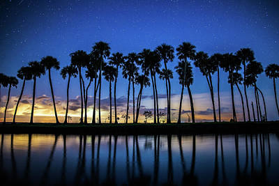 Photograph - Nature Night Light Show by Stefan Mazzola