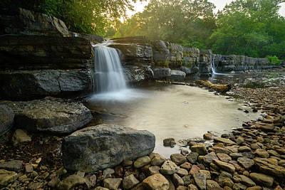Photograph - Nature's Design by Michael Scott