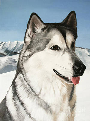 Painting - Nayuk Alaska Malamute by Mariella Wassing