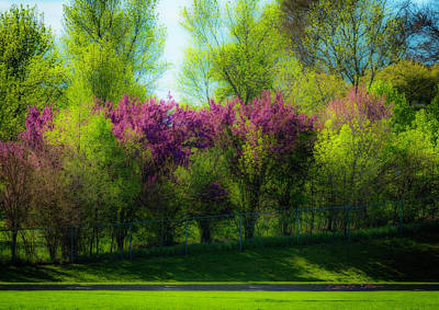 Photograph - Nebraska Springtime by Edward Peterson