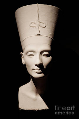 Photograph - Nefertiti by Sue Harper