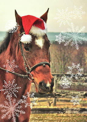 Photograph - Neigh Wish You Snow by JAMART Photography
