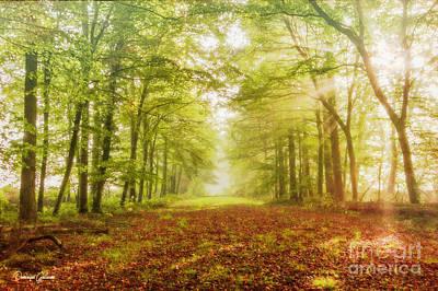 Neither Summer Nor Winter But Autumn Light Art Print