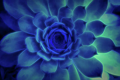 Digital Art - Neon Blue Sempervivum by Scott Lyons