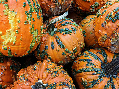 Photograph - Nestled - Autumn Pumpkins by Debi Dalio