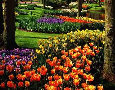 Photograph - Netherlands, Lisse, Keukenhof Gardens by Tom Till