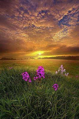 Photograph - Neverwhere by Phil Koch