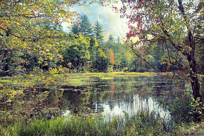 Photograph - New Hampshire Marsh by John Rivera