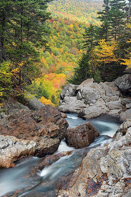 Photograph - New Hampshire Wilderness-autumn Scenic by Expressive Landscapes Nature Photography