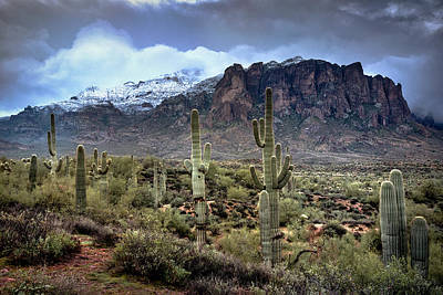 Photograph - New Year's Day At The Superstitions by Saija Lehtonen