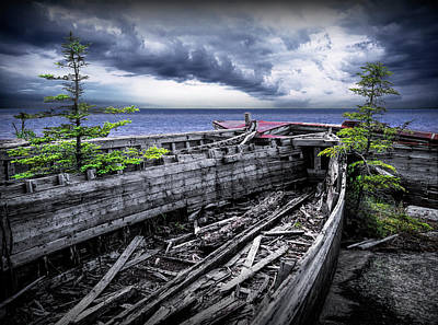 Photograph - Neys Provincial Park Shipwrecks With Pine Trees In Ontario Canada by Randall Nyhof