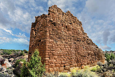 Photograph - Ruin On El Cajon Mesa by Kathleen Bishop