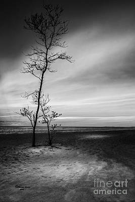 Driftwood Photograph - Night Fall by Marvin Spates