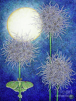 Painting - Night Garden 2 by Amy E Fraser