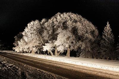Photograph - Night Of The Hoar Frost by David Matthews