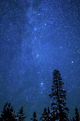 Photograph - Night Sky At Otter Point Cliffs by Stefan Mazzola