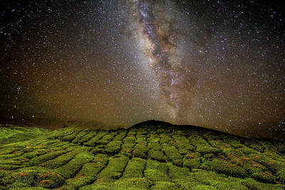 Photograph - Night Sky Over Tea Plantation by By Tourtrophy