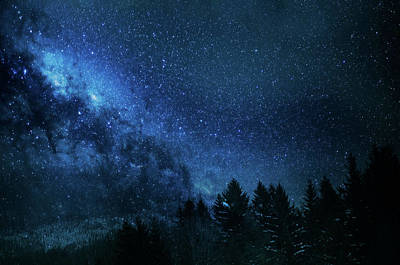 Photograph - Night Sky With Myriad Stars by Jenny Rainbow