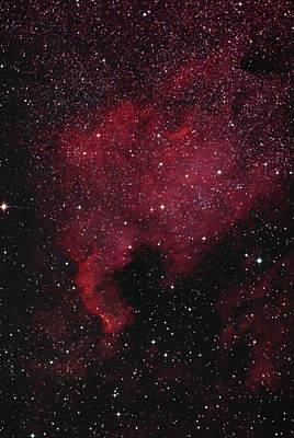 Photograph - North American Nebula by Lon Dittrick