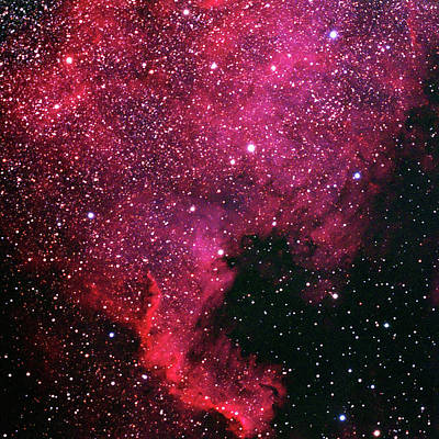 Photograph - North American Nebula, Near Deneb by A. V. Ley