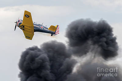 On Trend At The Pool - North American P-64 by Paul Quinn